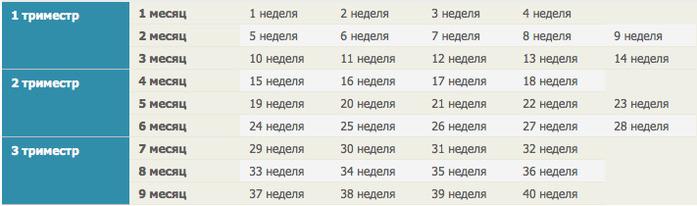 Таблица в картинках беременности по неделям